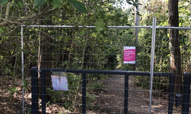 Kauri Glen bush closure upsets Northcote residents